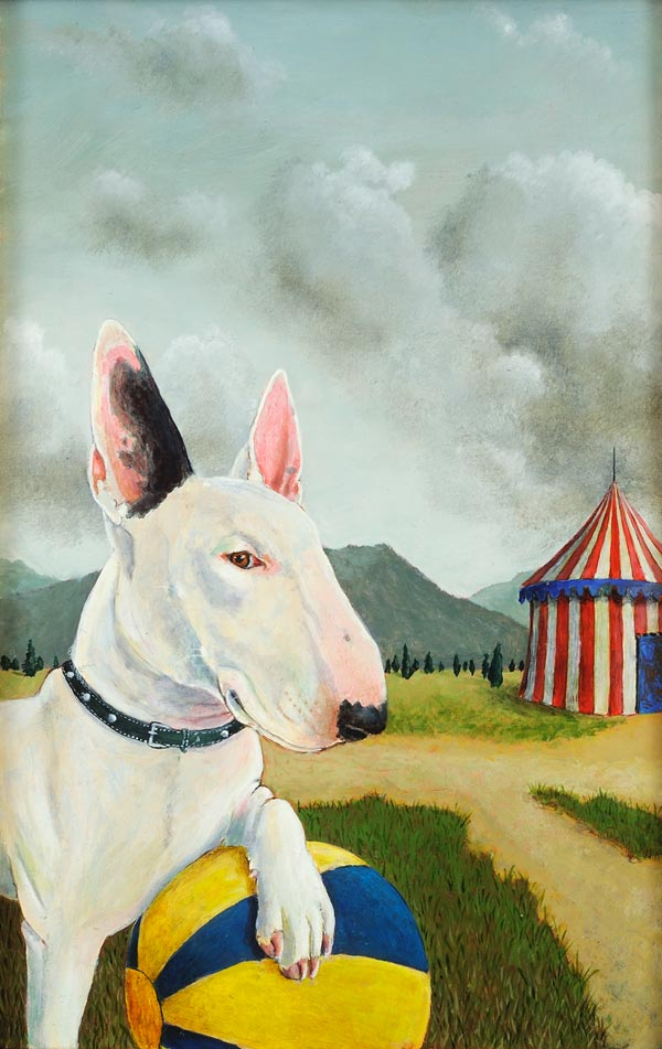 Bull Terrier, Dog Portraits, 2014 _ Timothy Vermeulen