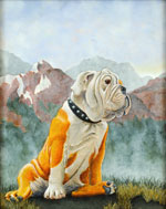 Bulldog in Landscape, Dog Portraits, 2015 _ Timothy Vermeulen